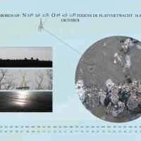 11-kalender10scsv