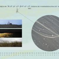6-kalender05scsv